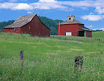 Whitman County, WA      <br /> A green pasture with red wooden barn and granery set on a low rise beneath Kamiak Butte, in the Palouse near the town of Palouse