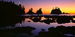 Olympic National Park, WA <br /> Silhouetted seastacks on the Point of Arches at sunset with crescent moon - from Shi Shi Beach