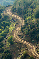 A road in Troodos mountains, Cyprus