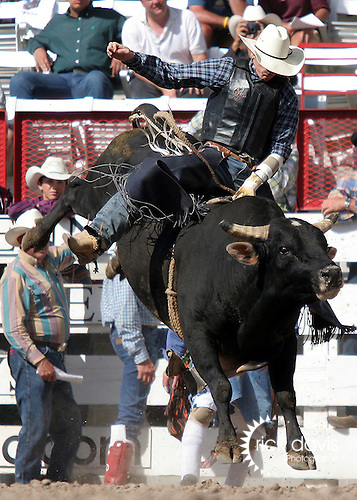 Bull Riding at Cheyene Frontier Days Rodeo