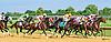 Start Jumping winning at Delaware Park on 8/25/16