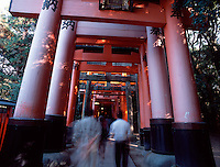 "Avenue of ""torii"" (entrance-gates), Inari Taisho Shrine, Kyoto, Japa"