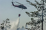 August 22, 2001 Coulterville, California  -- Creek Fire – Military type helicopter drops water on Cuneo Road hot spot.  The Creek Fire burned 11,500 acres between Highway 49 and Priest-Coulterville Road a few miles north of Coulterville, California.