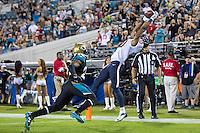 Jaguars vs Texans 2013