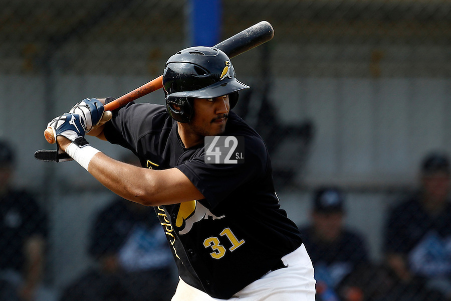 10 September 2011: Tip Connor of L&D Amsterdam Pirates is seen at bat during game 4 of the 2011 Holland Series won 6-2 by L&D Amsterdam Pirates over Vaessen Pioniers, in Amsterdam, Netherlands.