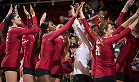 STANFORD, CA - November 2, 2018: Audriana Fitzmorris, Tami Alade, Sidney Wilson at Maples Pavilion. No. 1 Stanford Cardinal defeated No. 15 Colorado Buffaloes 3-2.