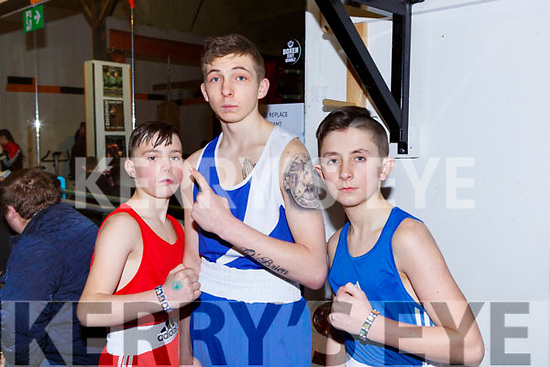 SHane Doherty Ballyduff, Anthony Heaphy Ballyduff and Nico Dooley Listowel at the County Boxing Championships in Castleisland on Sunday