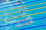 Swimmers compete during the 10th FINA World Swimming Championships (25m) at the Hamdan bin Mohammed bin Rashid Sports Complex on December 16, 2010 in Dubai, United Arab Emirates. Photo by Victor Fraile / Power Sport Images.