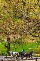 Springtime in Central Park, New York, New York USA.