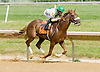 Mr. Continental winning at Delaware Park on 5/28/12