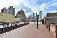 Roof Deck at 1420 York Avenue