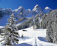 Austria, Upper Austria, Salzkammergut, winter scenery at Gosau lake