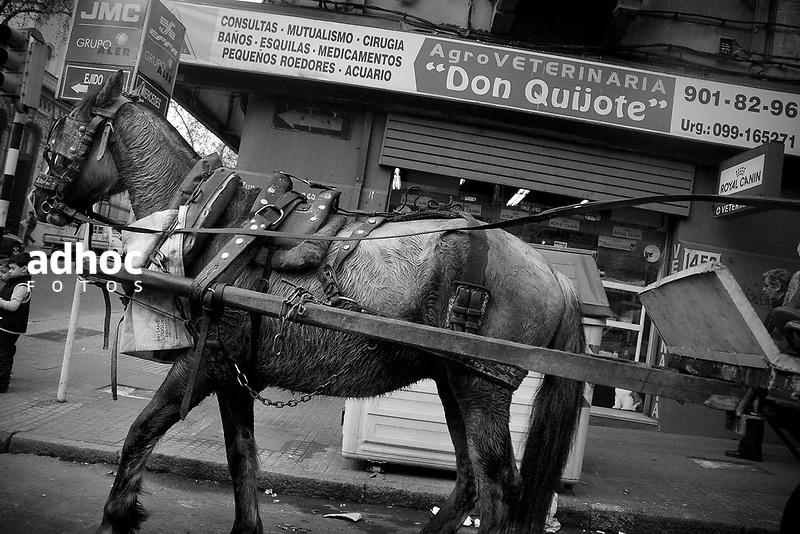 Carro de clasificador de basura. Montevideo, 2007.<br /> URUGUAY / MONTEVIDEO / <br /> Foto: Ricardo Ant&uacute;nez / AdhocFotos<br /> www.adhocfotos.com