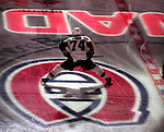6 February 2010: Pittsburgh Penguins' defenseman Jay McKee stands at center ice prior to a game against the Montreal Canadiens at the Bell Centre in Montreal, Quebec, Canada. The Canadiens defeated the Penguins 5-3. Mandatory Credit: Ed Wolfstein Photo