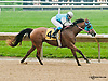 Top Thess winning at Delaware Park racetrack on 6/11/14<br />