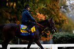 November 1, 2018: McKinzie, trained by Bob Baffert, exercises in preparation for the Breeders' Cup Classic at Churchill Downs on November 1, 2018 in Louisville, Kentucky. Alex Evers/Eclipse Sportswire/CSM