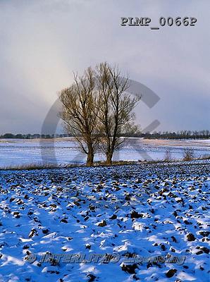 Marek, CHRISTMAS LANDSCAPES, WEIHNACHTEN WINTERLANDSCHAFTEN, NAVIDAD PAISAJES DE INVIERNO, photos+++++,PLMP0066P,#xl#