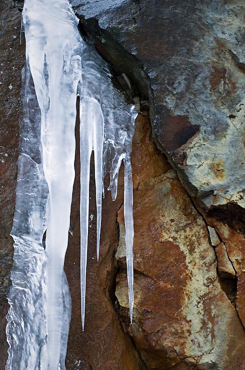 Lichen, Ice & Stone