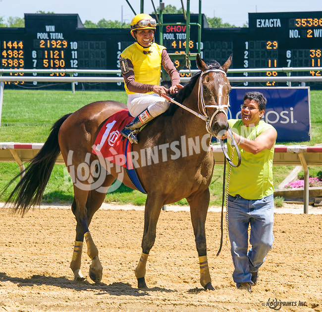 Jack Quickstart winning at Delaware Park on 6/13/16