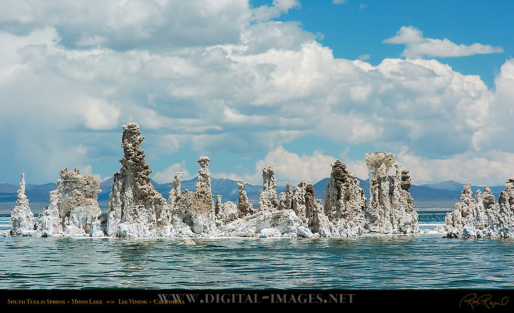 South Tufa in Spring, Mono Lake, Lee Vining, California