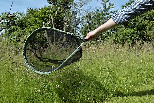 Using a butterfly net