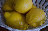 Lemons at Nana's House, Castine, Maine, US