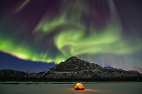 Northern lights over yellow tent and winter camp in the Brooks Range, Alaska.