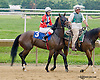 Legal Buzz  with Silija Storen before The International Ladies Fegentri  group at Delaware Park racetrack on 6/9/14