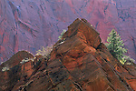 Red rock outcrop along Taylor Creek Kolob Canyons area, Zion National Park, UTAH