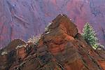 Red rock outcrop along Taylor Creek Kolob Canyons area, Zion National Park, UTAH