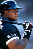 Frank Thomas of the Chicago White Sox during a game at Anaheim Stadium in Anaheim, California during the 1997 season.(Larry Goren/Four Seam Images)