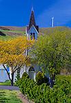 Maryhill, Washington: Maryhill Community Church, 1888, with orchard rows