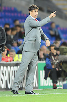 Cardiff City Stadium, Friday 11th Oct 2013. Instructions to his players from Wales manager Chris Coleman during the Wales v Macedonia FIFA World Cup 2014 Qualifier match at Cardiff City Stadium, Cardiff, Friday 11th Oct 2014. All images are the copyright of Jeff Thomas Photography-07837 386244-www.jaypics.photoshelter.com