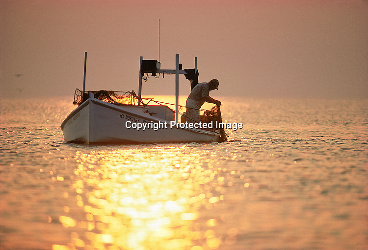 Edward Harrison uses a hand scrape to catch soft crabs near Smith Island, MD, in Chesapeake Bay