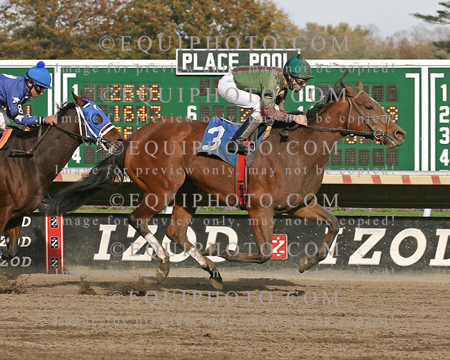 One Wild Bell winning at Monmouth Park on 10/30/10.  Photo By EQUI-PHOTO