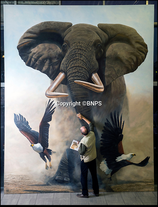 BNPS.co.uk (01202 558833)<br /> Pic: PhilYeomans/BNPS<br /> <br /> The elephant in the room... a wildlife artist has painted the world's largest elephant artwork as a lifesize tribute to a majestic African elephant that has been killed by poachers.<br /> <br /> Jonathan Truss, 56, was so distraught at the poaching of one of Africa's biggest and most adored mammals that he set about honouring its life through a life-size artwork titled 'Tusker's Last Stand'. <br /> <br /> The 12ft by 15ft oil painting of 'Satao', which was killed for his ivory, became so enormous that Jonathan had to move out of his studio at home in Bournemouth, Dorset. <br /> <br /> He has been working at a car showroom for the last month after bosses from a nearby Mercedes dealership offered him space to work.