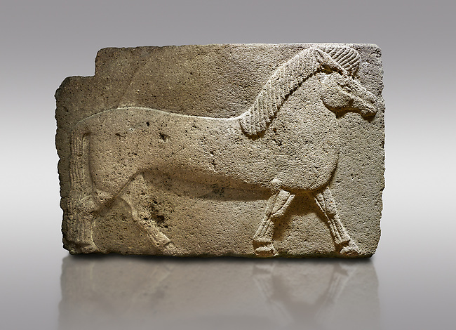 Pictures & images of Phrygian relief sculpted orthostat stone panel. Andesite, Kucukevler, Ankara., 1200-700 B.C. Walking horse. Muscles in the legs of the figure are schematic. Anatolian Civilisations Museum, Ankara, Turkey<br /> <br /> Against a gray background.