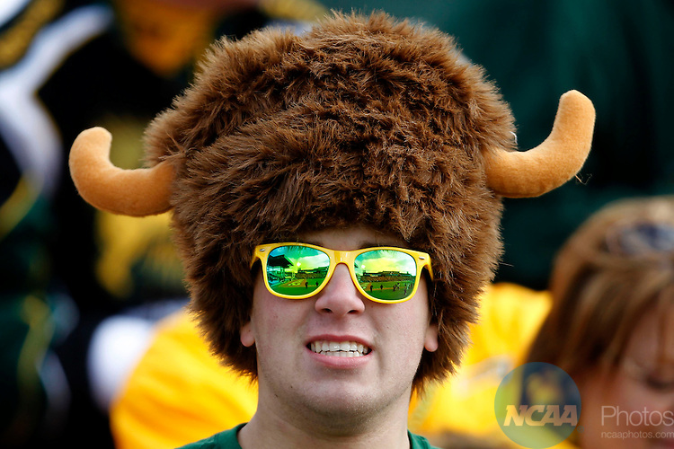 05 JAN 2013: A Bison fan watches the action from the stands in the first half during the Division I Men's Football Championship held at FC Dallas Stadium in Frisco, TX.  North Dakota State defeated Sam Houston State 39-13 for the national championship. Ron Jenkins/NCAA Photos