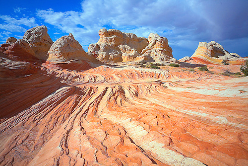 PARALLEL LINES AND SWIRLS IN THE SANDSTONE ROCK FORMATIONS MAKE UP THE LANDSCAPE AT WHITE POCKET ON THE PARIA PLATEAU IN THE VERMILLION CLIFFS, GRAND STAIRCASE WILDERNESS AREA IN NORTHERN ARIZONA
