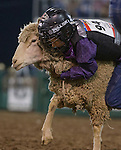 """Colten Leavitt from Sparks competes in the Mutton Bustin' event during Purple Night at the Rodeo on Tuesday night, June 21, 2016.  """"Man Up Crusade Night"""" encouraged rodeo goers to wear purple for advocacy to stop domestic violence."""