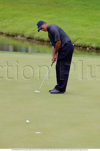 TIGER WOODS (USA) attempts a putt on the 3rd green, 2002 American Express World Golf Championships, Mount Juliet, Co Kilkenny, Ireland, 020920. Photo: Neil Tingle/Action Plus...golf golfer player.putts putting.....................