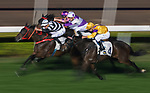 Jockey Hugh Bowman riding Circuit Glory #7 competes in the Race 10, Maurice Handicap, during the Longines Hong Kong International Races at Sha Tin Racecourse on December 10 2017, in Hong Kong, Hong Kong. Photo by Victor Fraile / Power Sport Images
