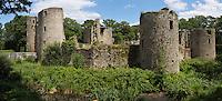 Europe/France/Pays de la Loire/44/Loire-Atlantique/Parc Naturel Régional de Brière/Herbignac: Le Château de Ranrouët est une forteresse médiévale