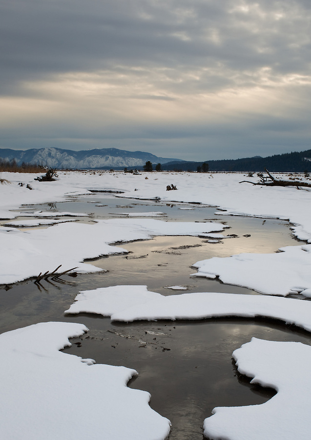 A warm stream drains into Pend Oreille Lake in Northern Idaho.