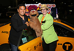 Robert Lopez, Trekkie Monster and Rick Lyon taking the 'Avenue Q' - 15th Anniversary Performance Taxi Cab at New World Stages on July 31, 2018 in New York City.