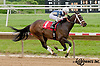 Jerry n' Elvis winning at Delaware Park on 5/18/13