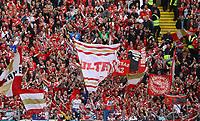 Mainzer Fans feiern - 12.05.2019: Eintracht Frankfurt vs. 1. FSV Mainz 05, 33. Spieltag Bundesliga, Commerzbank Arena, DISCLAIMER: DFL regulations prohibit any use of photographs as image sequences and/or quasi-video.