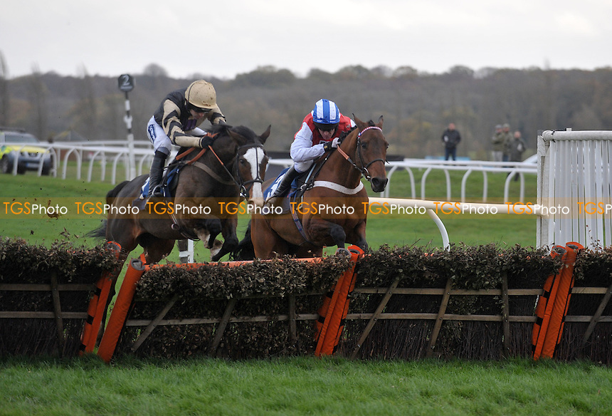 Prospect Wells, ridden by Ruby Walsh leads All The Aces ridden by Barry Garaghty to win the Sportingbet Novices´ Hurdle  at Newbury Racecourse, Berkshire - 26/11/2011 - MANDATORY CREDIT: Martin Dalton/TGSPHOTO - Self billing applies where appropriate - 0845 094 6026 - contact@tgsphoto.co.uk - NO UNPAID USE.
