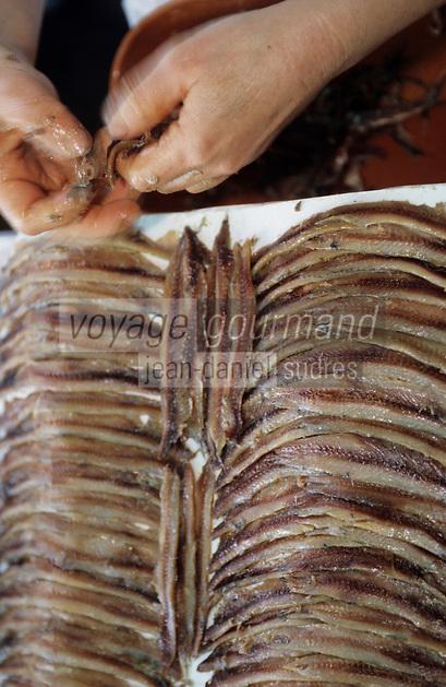Europe/France/Languedoc-Roussillon/66/Pyrénées-Orientales/Collioure: prépartion des anchois de Collioure à la conserverie Roques