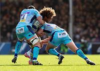 Castres Camille Gerondeau in action during todays match<br /> <br /> Photographer Bob Bradford/CameraSport<br /> <br /> European Rugby Heineken Champions Cup Pool 2 - Exeter Chiefs v Castres - Sunday 13th January 2019 - Sandy Park - Exeter<br /> <br /> World Copyright &copy; 2019 CameraSport. All rights reserved. 43 Linden Ave. Countesthorpe. Leicester. England. LE8 5PG - Tel: +44 (0) 116 277 4147 - admin@camerasport.com - www.camerasport.com